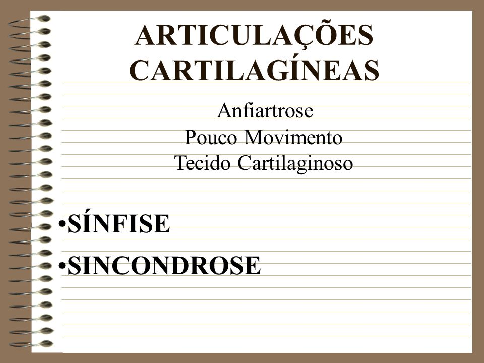ARTICULAÇÕES CARTILAGÍNEAS Anfiartrose Pouco Movimento Tecido Cartilaginoso SÍNFISE SINCONDROSE
