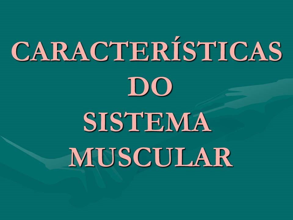CARACTERÍSTICAS DO SISTEMA MUSCULAR