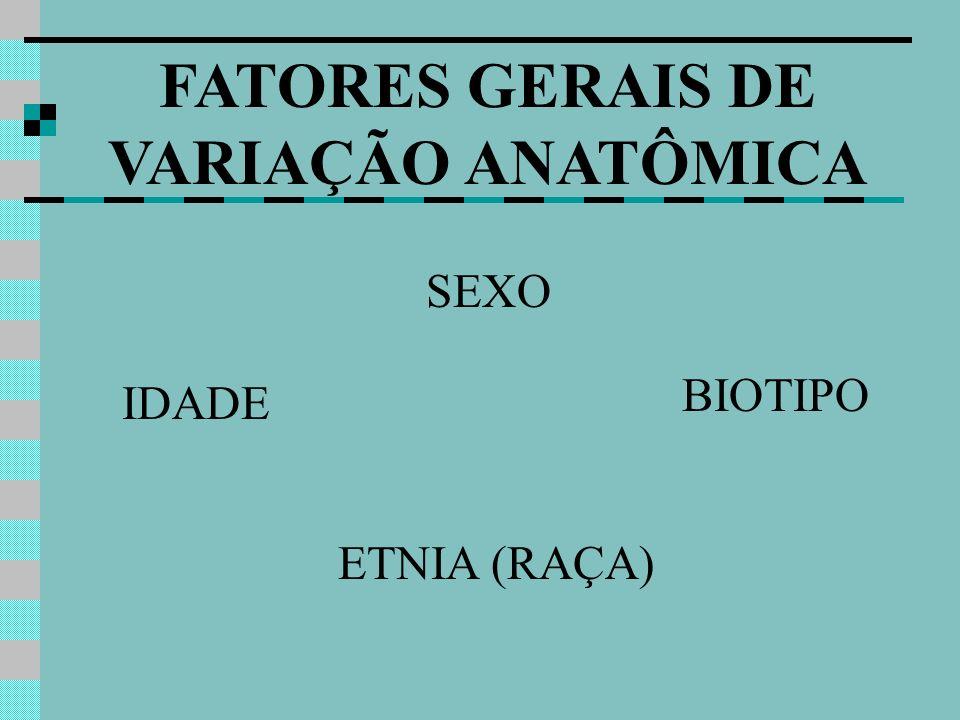 FATORES GERAIS DE VARIAÇÃO ANATÔMICA SEXO BIOTIPO IDADE ETNIA (RAÇA)