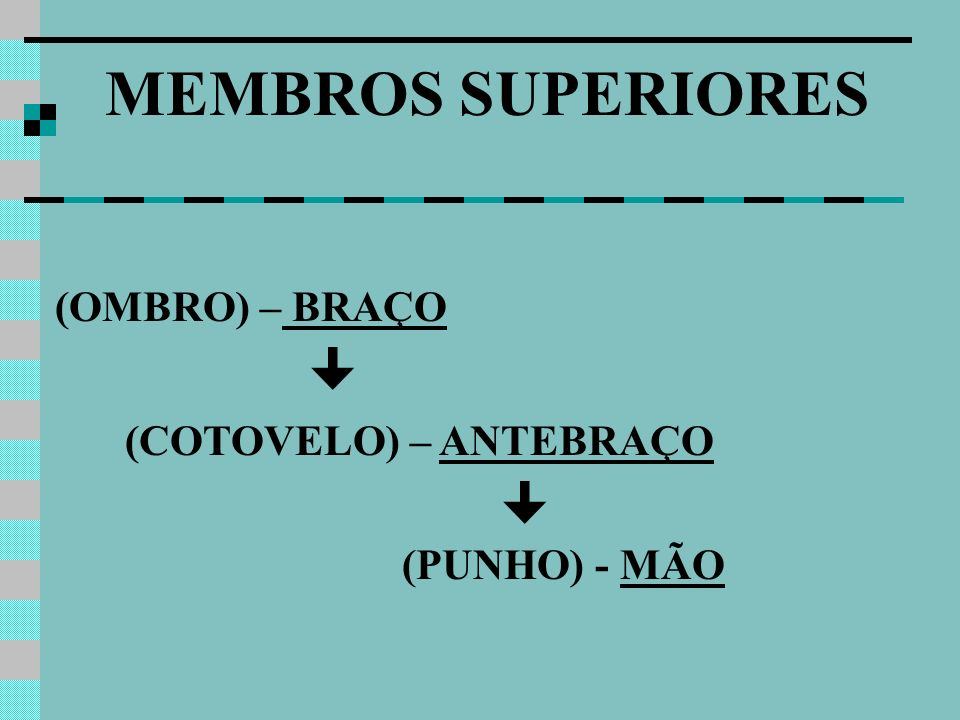 (OMBRO) – BRAÇO (COTOVELO) – ANTEBRAÇO (PUNHO) - MÃO MEMBROS SUPERIORES