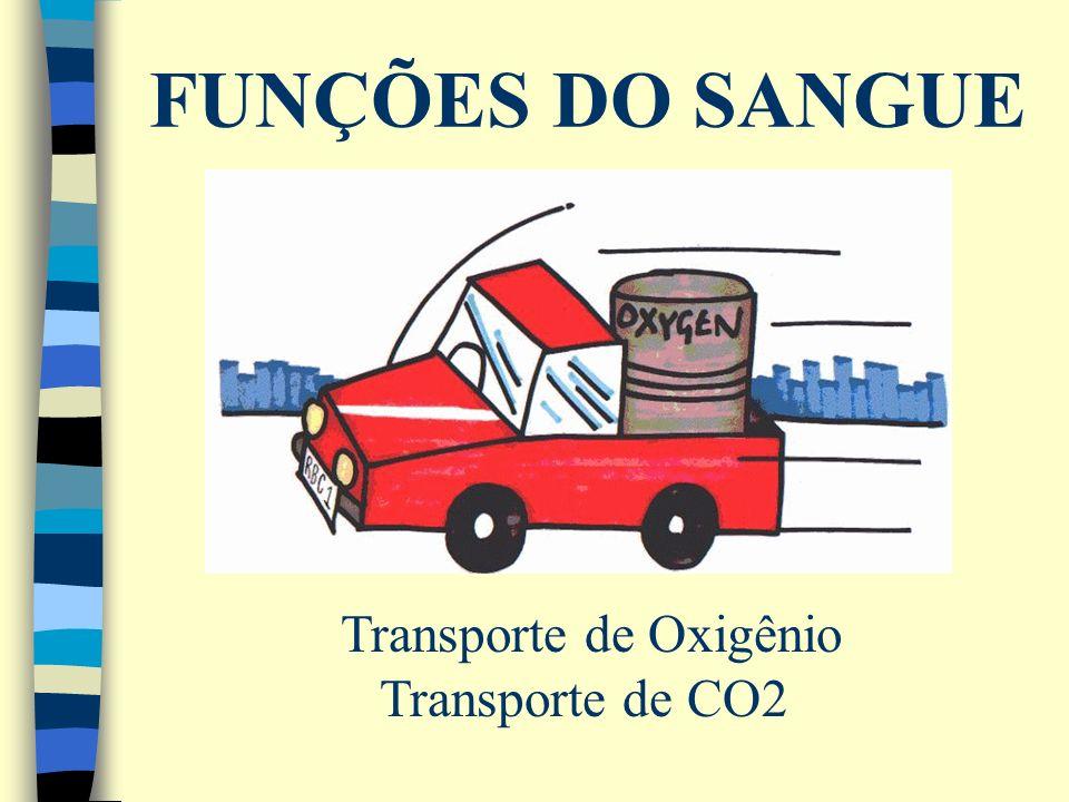 FUNÇÕES DO SANGUE Transporte de Oxigênio Transporte de CO2