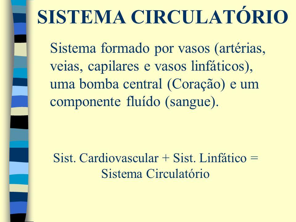Sistema formado por vasos (artérias, veias, capilares e vasos linfáticos), uma bomba central (Coração) e um componente fluído (sangue). Sist. Cardiova
