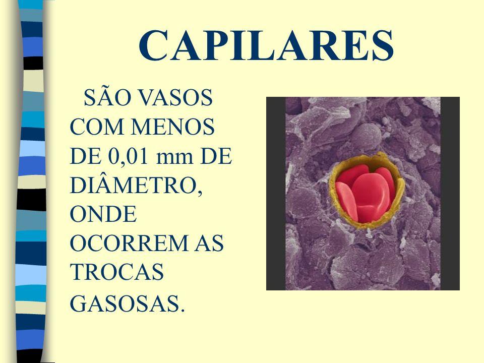 CAPILARES SÃO VASOS COM MENOS DE 0,01 mm DE DIÂMETRO, ONDE OCORREM AS TROCAS GASOSAS.