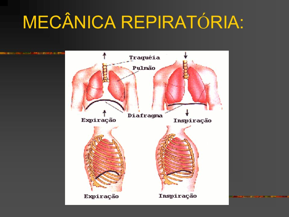 MECÂNICA REPIRAT Ó RIA: