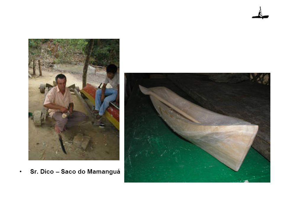 Exemplo de Case No Brasil, um trabalho de análise da prática do rafting no ambiente foi realizado no núcleo Santa Virgínia – Parque Estadual da Serra do Mar.