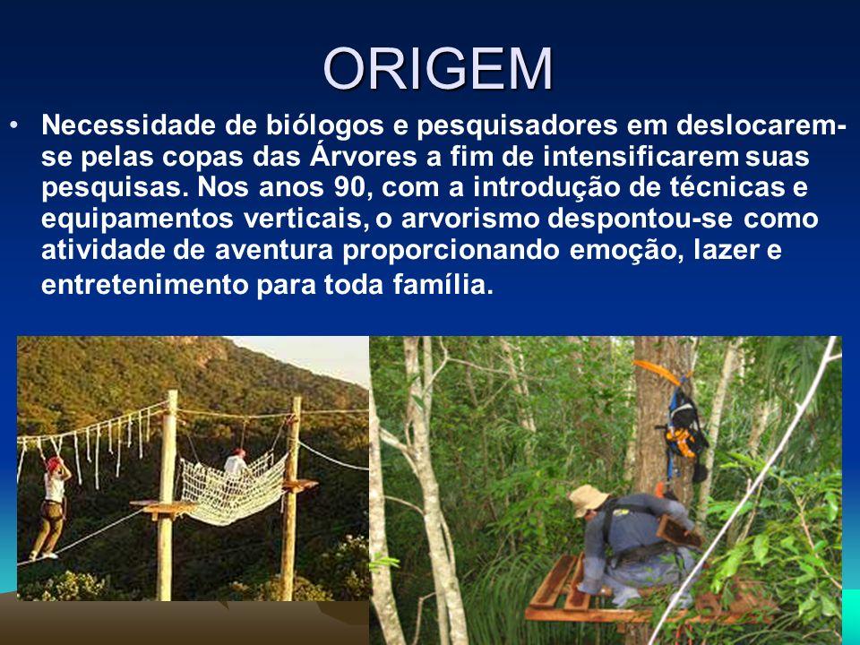 ORIGEM Necessidade de biólogos e pesquisadores em deslocarem- se pelas copas das Árvores a fim de intensificarem suas pesquisas. Nos anos 90, com a in