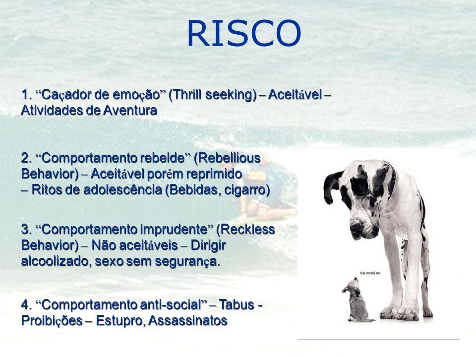 RISCO 1. Ca ç ador de emo ç ão (Thrill seeking) – Aceit á vel – Atividades de Aventura 2. Comportamento rebelde (Rebellious Behavior) – Aceit á vel po