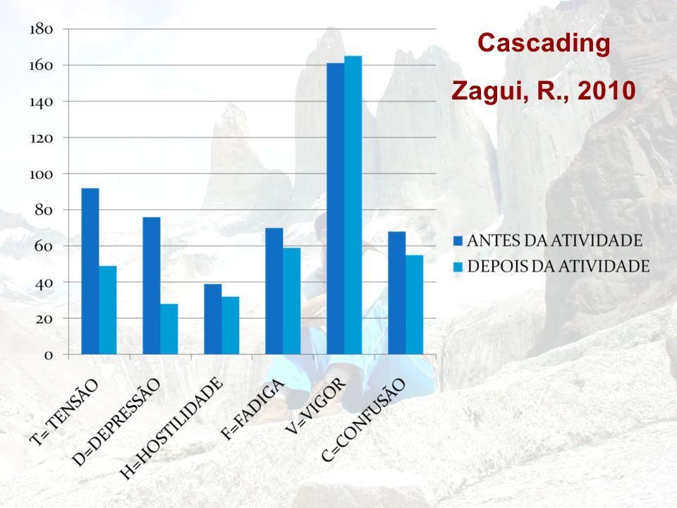 Cascading Zagui, R., 2010