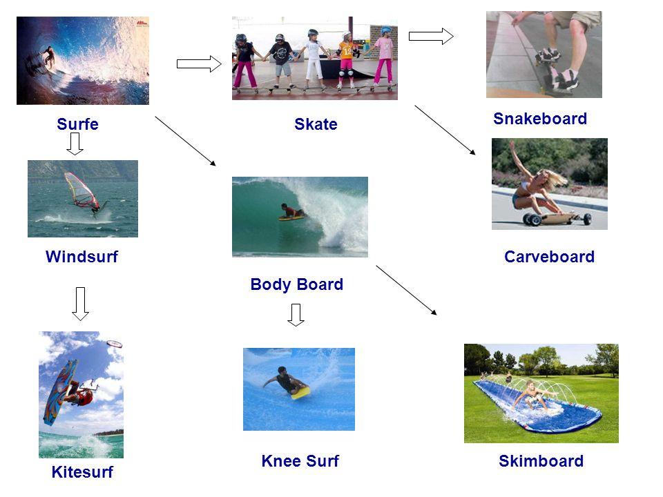 SurfeSkate Snakeboard CarveboardWindsurf Kitesurf Body Board Knee SurfSkimboard