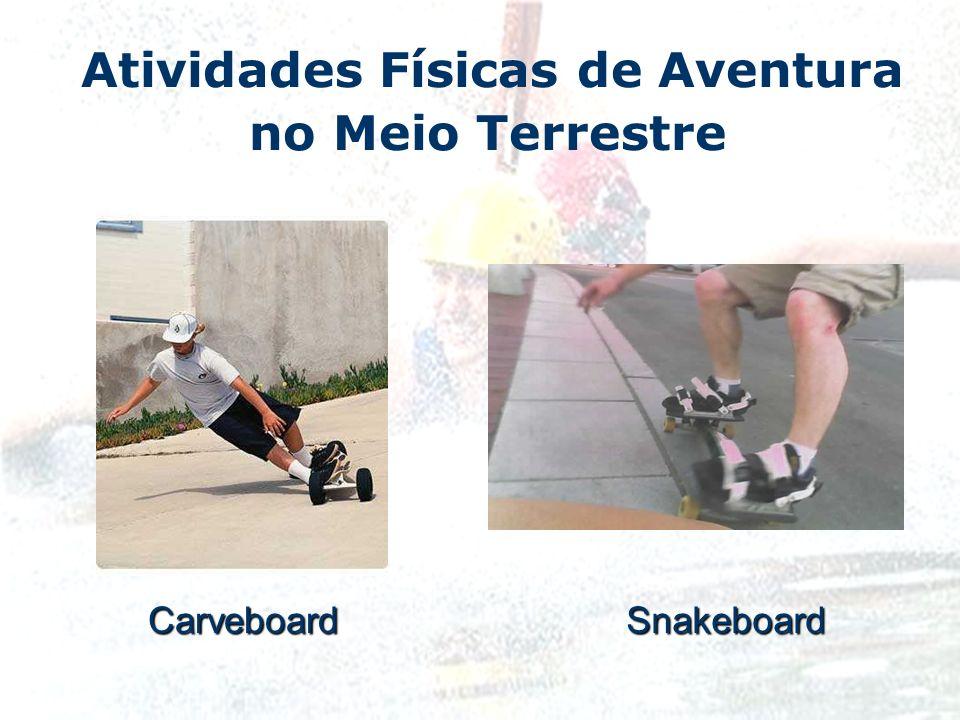 Atividades Físicas de Aventura no Meio TerrestreCarveboard Snakeboard