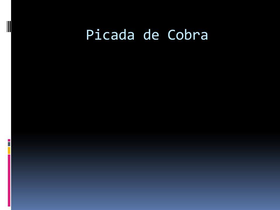 Picada de Cobra