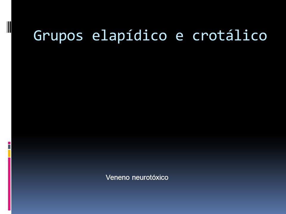Grupos elapídico e crotálico Veneno neurotóxico
