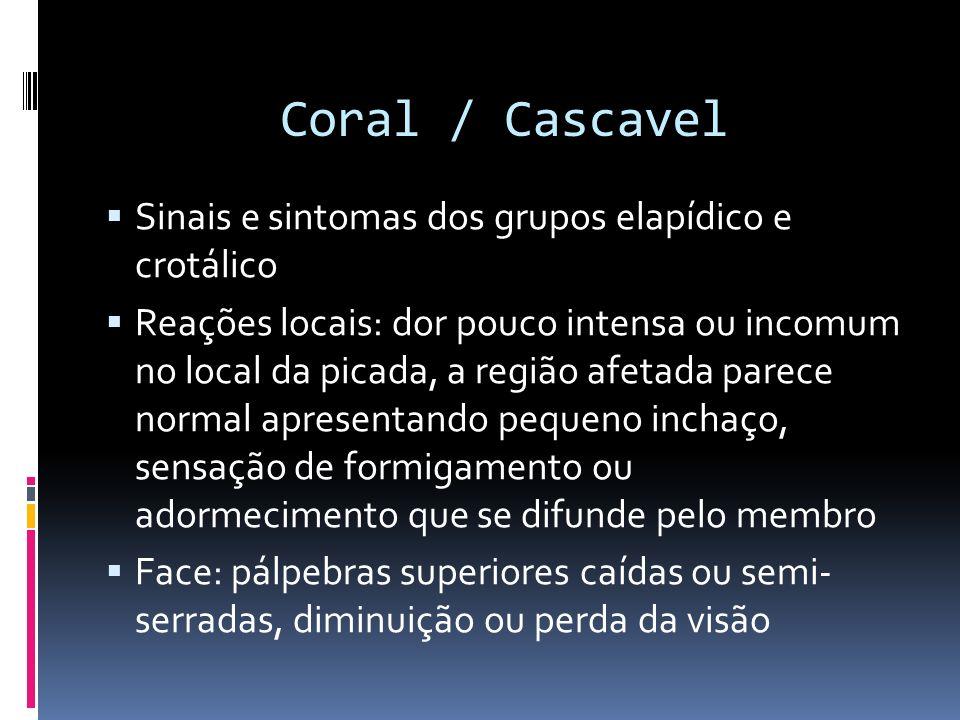 Coral / Cascavel Sinais e sintomas dos grupos elapídico e crotálico Reações locais: dor pouco intensa ou incomum no local da picada, a região afetada