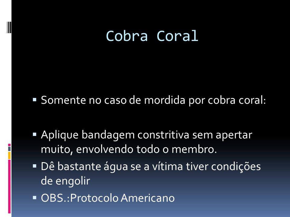 Cobra Coral Somente no caso de mordida por cobra coral: Aplique bandagem constritiva sem apertar muito, envolvendo todo o membro. Dê bastante água se