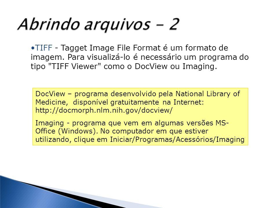 TIFF - Tagget Image File Format é um formato de imagem. Para visualizá-lo é necessário um programa do tipo
