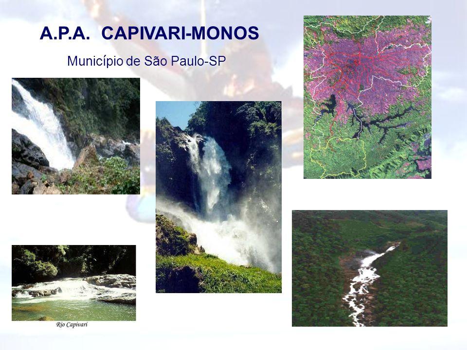 A.P.A. CAPIVARI-MONOS Munic í pio de São Paulo-SP