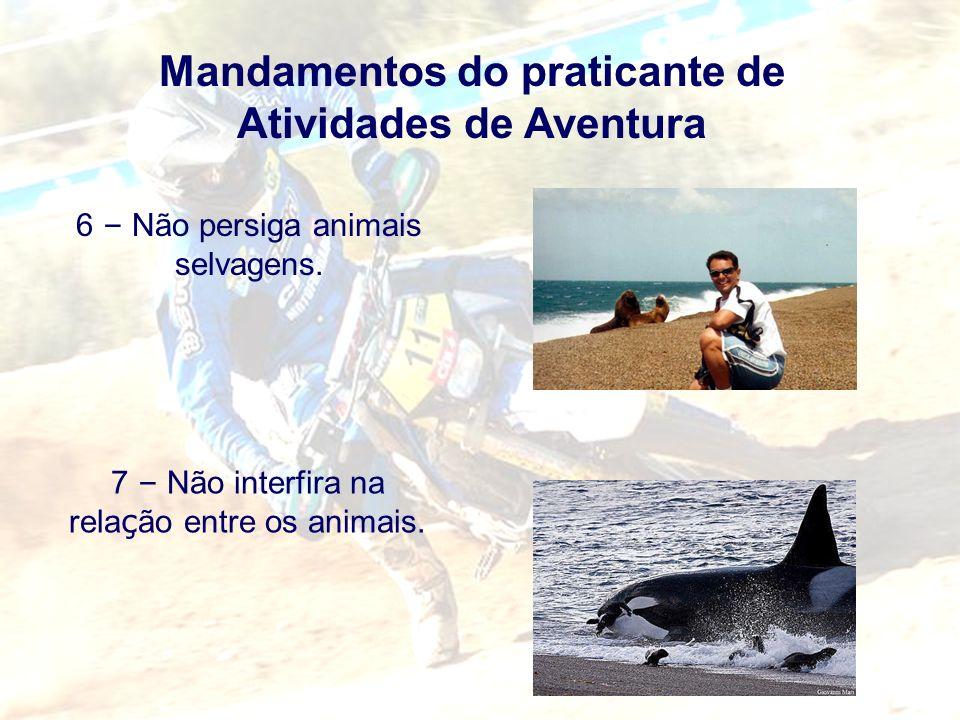 Mandamentos do praticante de Atividades de Aventura 6 – Não persiga animais selvagens. 7 – Não interfira na rela ç ão entre os animais.
