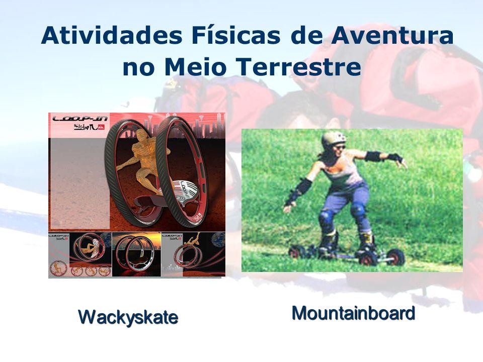 Wackyskate Mountainboard