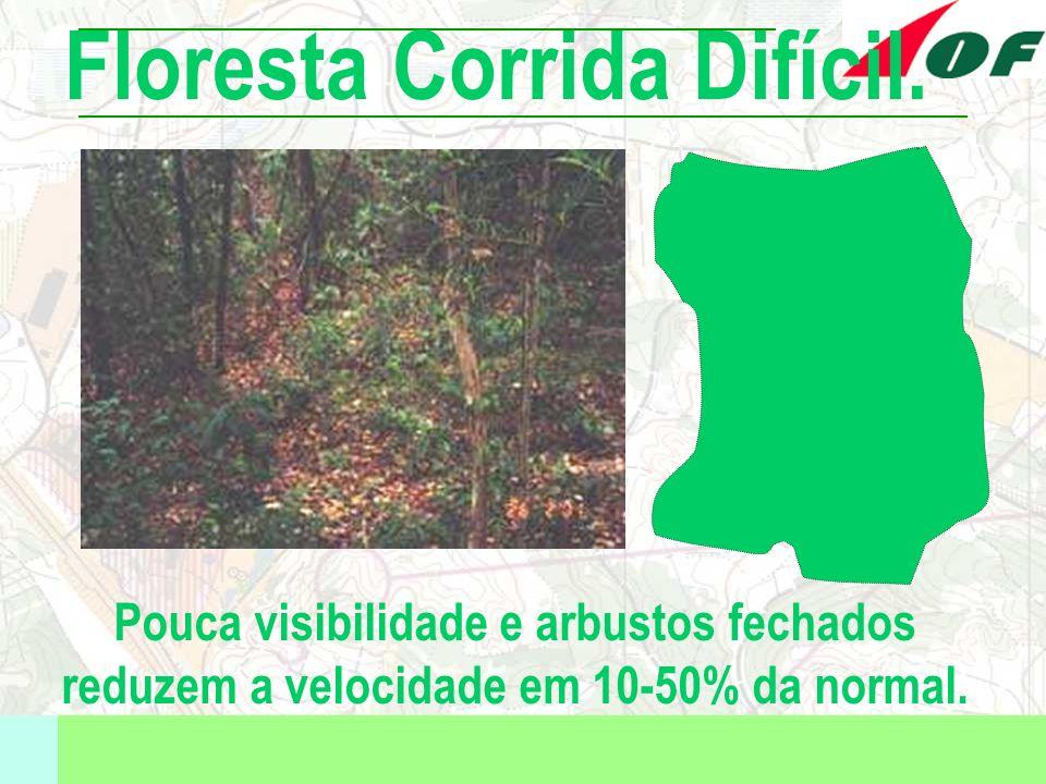 Pouca visibilidade e arbustos fechados reduzem a velocidade em 10-50% da normal. Floresta Corrida Difícil.