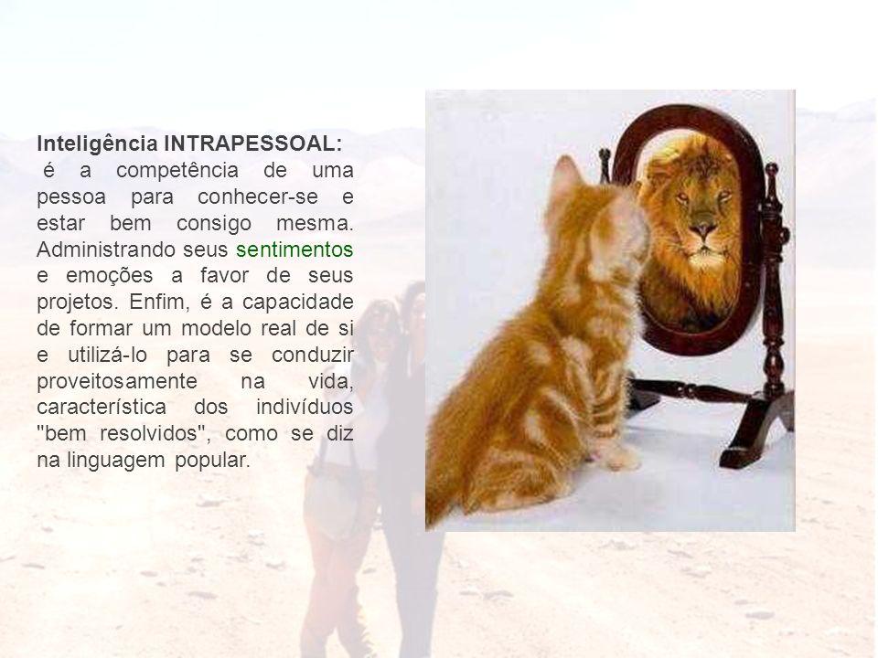 Inteligência INTRAPESSOAL: é a competência de uma pessoa para conhecer-se e estar bem consigo mesma. Administrando seus sentimentos e emoções a favor