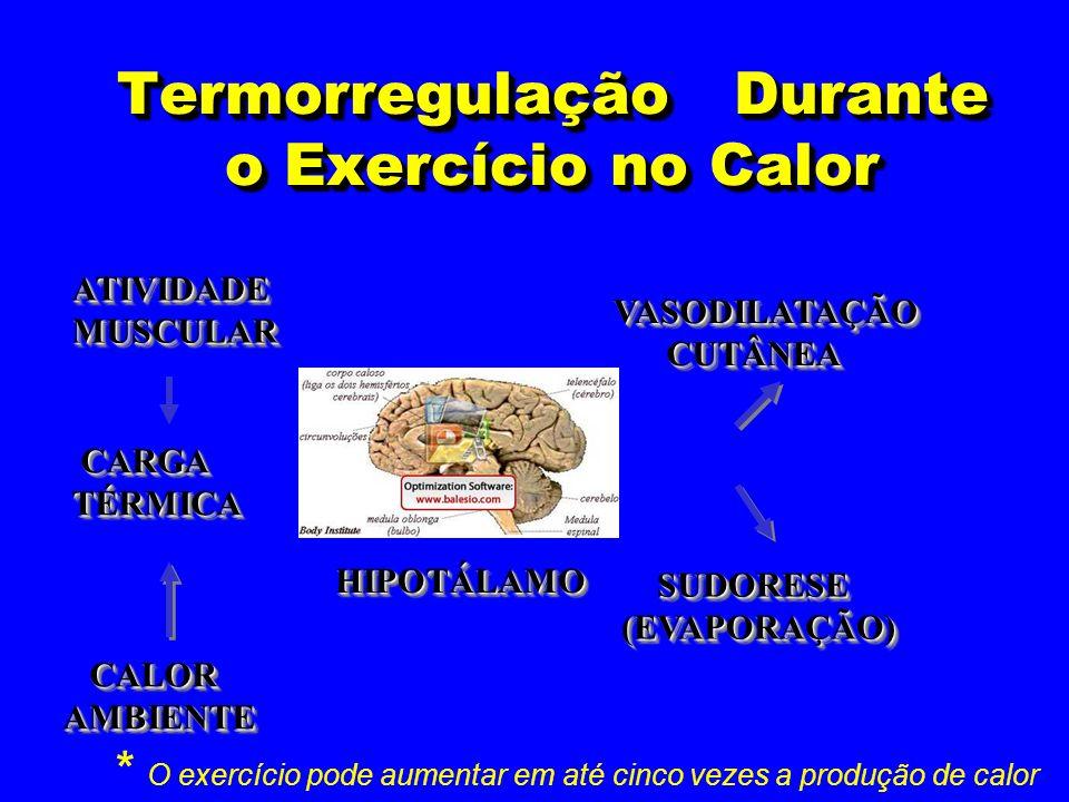 Termorregulação Durante o Exercício no Calor VASODILATAÇÃO CUTÂNEA CUTÂNEAVASODILATAÇÃO SUDORESE SUDORESE(EVAPORAÇÃO) (EVAPORAÇÃO) ATIVIDADEMUSCULARAT