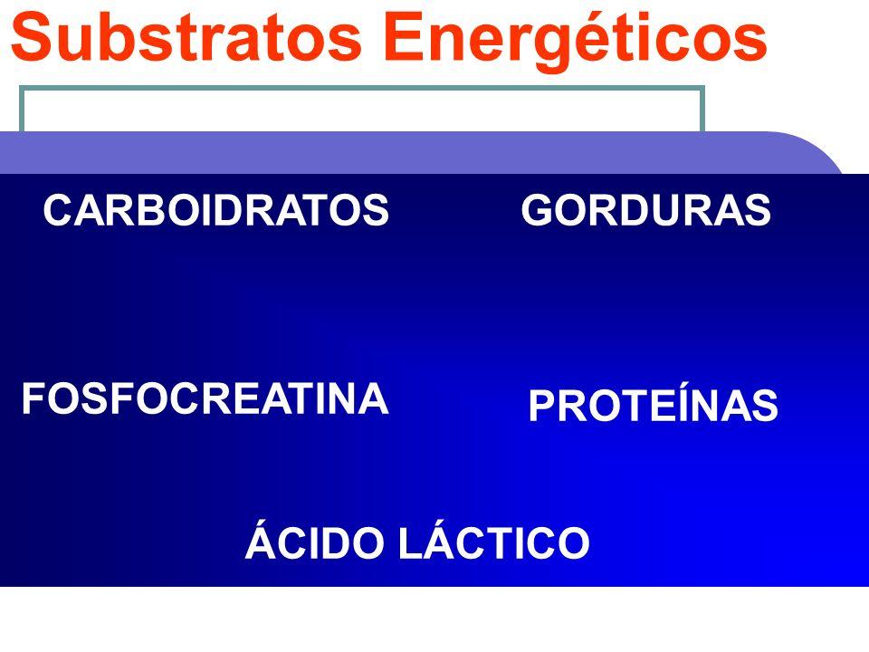 Substratos Energéticos CARBOIDRATOSGORDURAS PROTEÍNAS ÁCIDO LÁCTICO FOSFOCREATINA