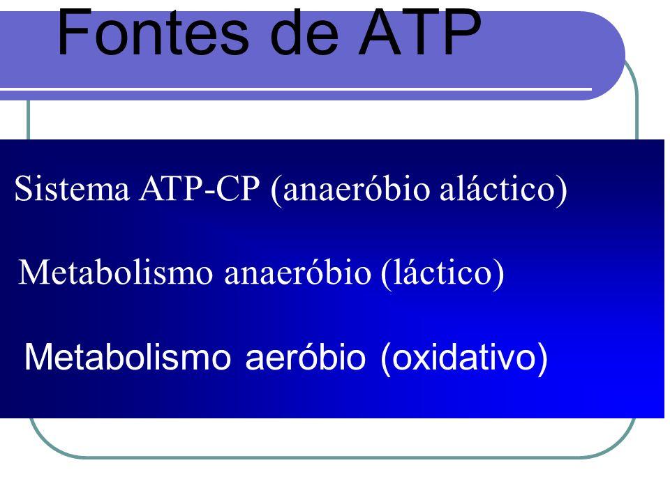 Fontes de ATP Metabolismo aeróbio (oxidativo) Sistema ATP-CP (anaeróbio aláctico) Metabolismo anaeróbio (láctico)