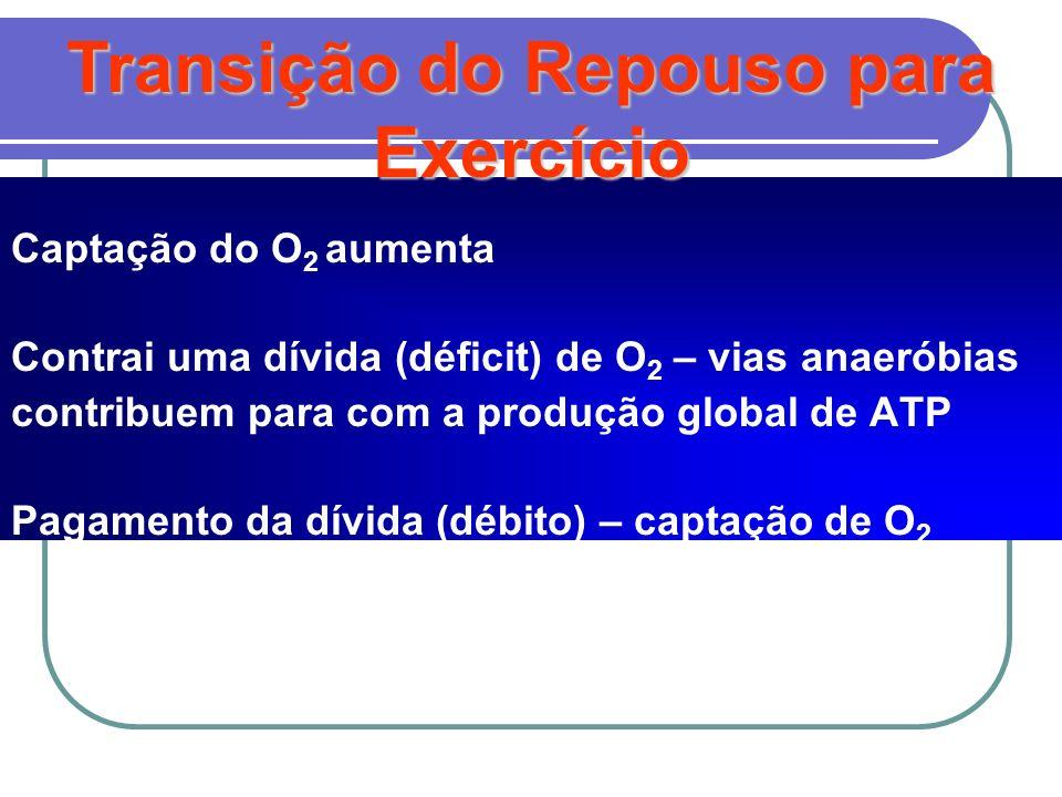 Transição do Repouso para Exercício Captação do O 2 aumenta Contrai uma dívida (déficit) de O 2 – vias anaeróbias contribuem para com a produção globa