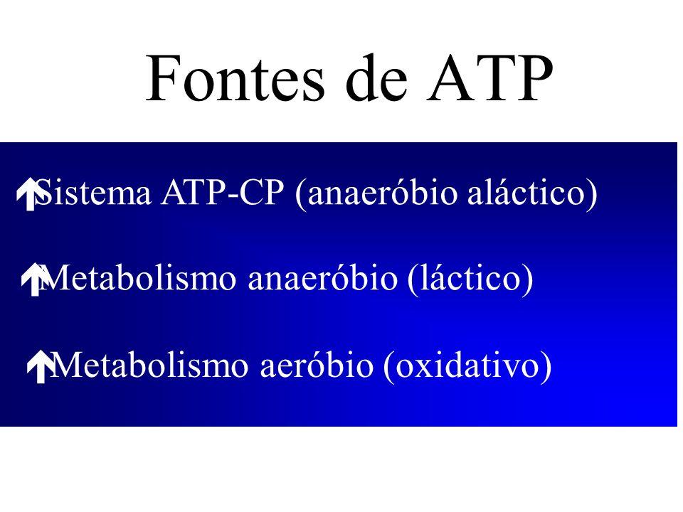 Fontes de ATP éMetabolismo aeróbio (oxidativo) éSistema ATP-CP (anaeróbio aláctico) éMetabolismo anaeróbio (láctico)