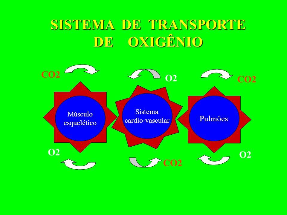 Músculo esquelético Sistema cardio-vascular Pulmões O2 CO2 SISTEMA DE TRANSPORTE SISTEMA DE TRANSPORTE DE OXIGÊNIO DE OXIGÊNIO CO2