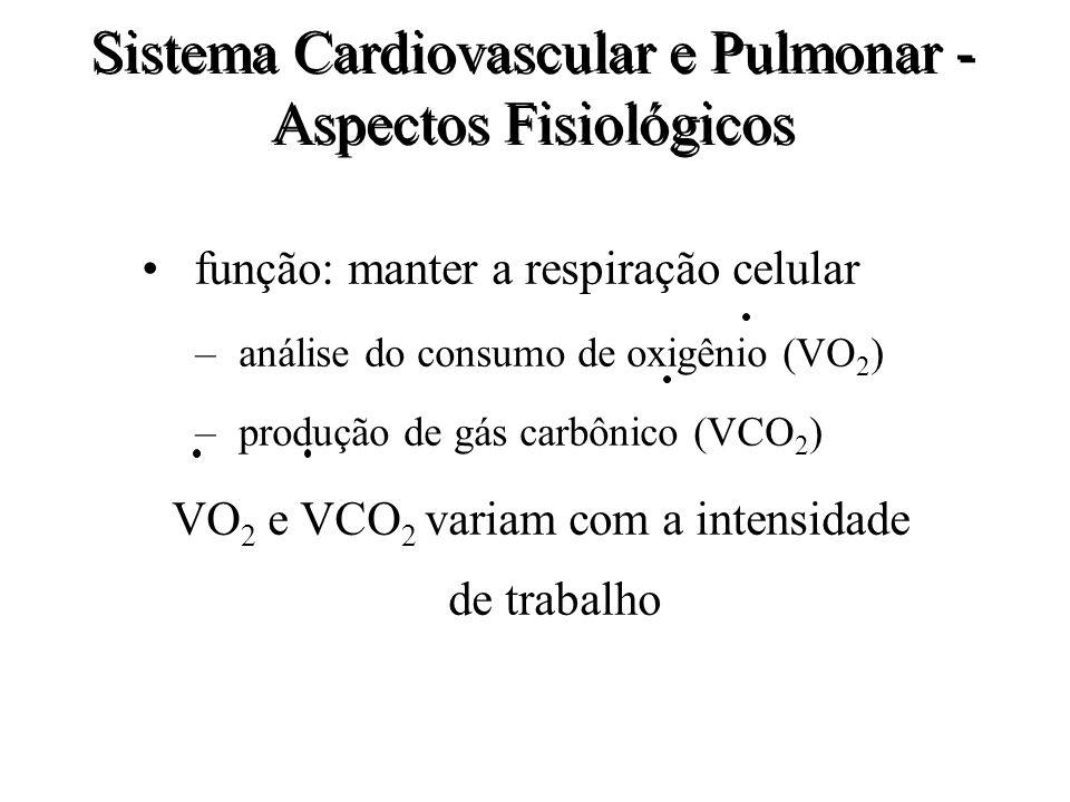 Sistema Cardiovascular e Pulmonar - Aspectos Fisiológicos função: manter a respiração celular – análise do consumo de oxigênio (VO 2 ) – produção de g
