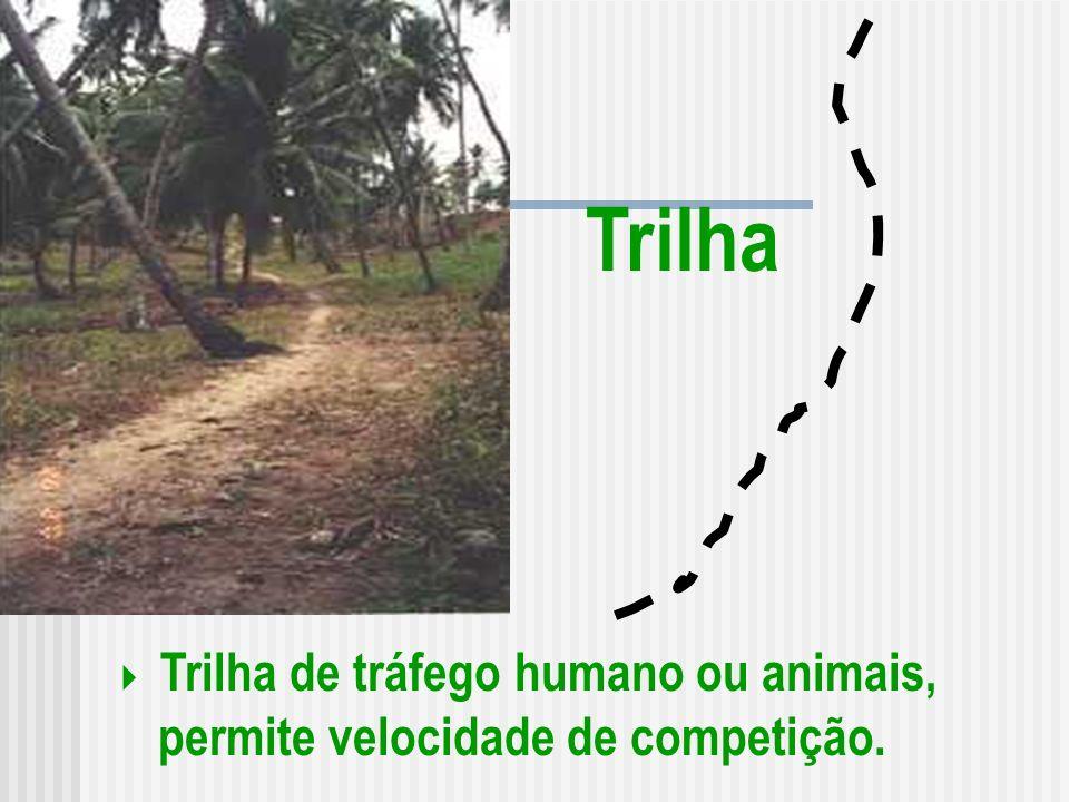Trilha Trilha de tráfego humano ou animais, permite velocidade de competição.