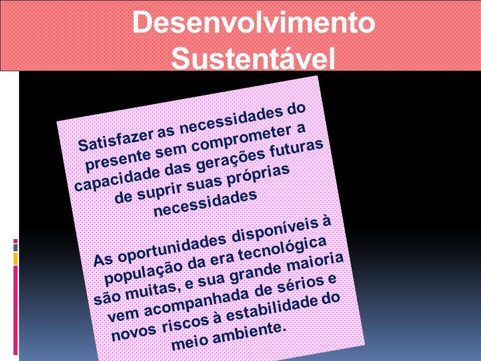 Desenvolvimento Sustentável Satisfazer as necessidades do presente sem comprometer a capacidade das gerações futuras de suprir suas próprias necessida