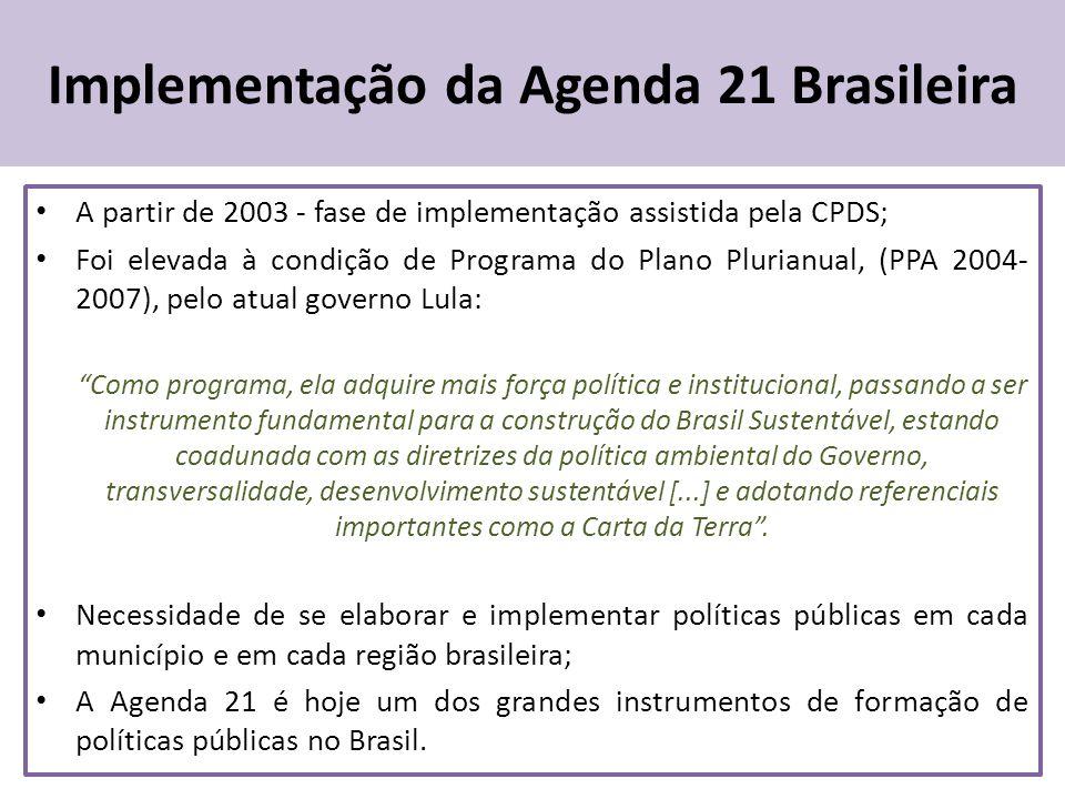 Implementação da Agenda 21 Brasileira A partir de 2003 - fase de implementação assistida pela CPDS; Foi elevada à condição de Programa do Plano Plurianual, (PPA 2004- 2007), pelo atual governo Lula: Como programa, ela adquire mais força política e institucional, passando a ser instrumento fundamental para a construção do Brasil Sustentável, estando coadunada com as diretrizes da política ambiental do Governo, transversalidade, desenvolvimento sustentável [...] e adotando referenciais importantes como a Carta da Terra.