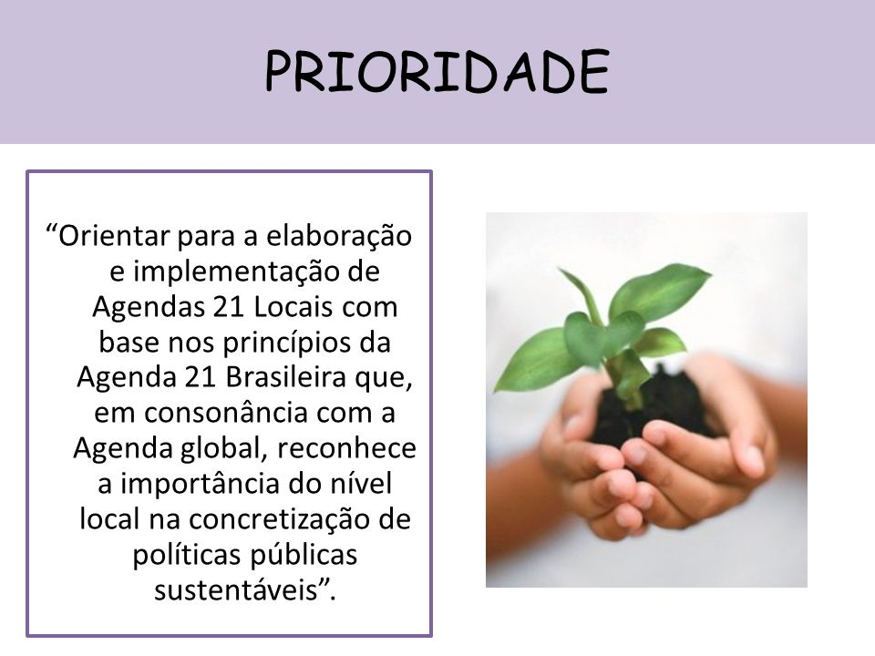 PRIORIDADE Orientar para a elaboração e implementação de Agendas 21 Locais com base nos princípios da Agenda 21 Brasileira que, em consonância com a Agenda global, reconhece a importância do nível local na concretização de políticas públicas sustentáveis.