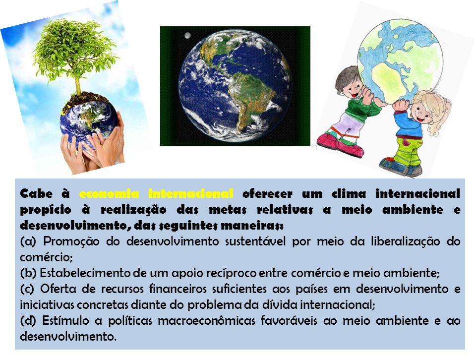 Cabe à economia internacional oferecer um clima internacional propício à realização das metas relativas a meio ambiente e desenvolvimento, das seguint