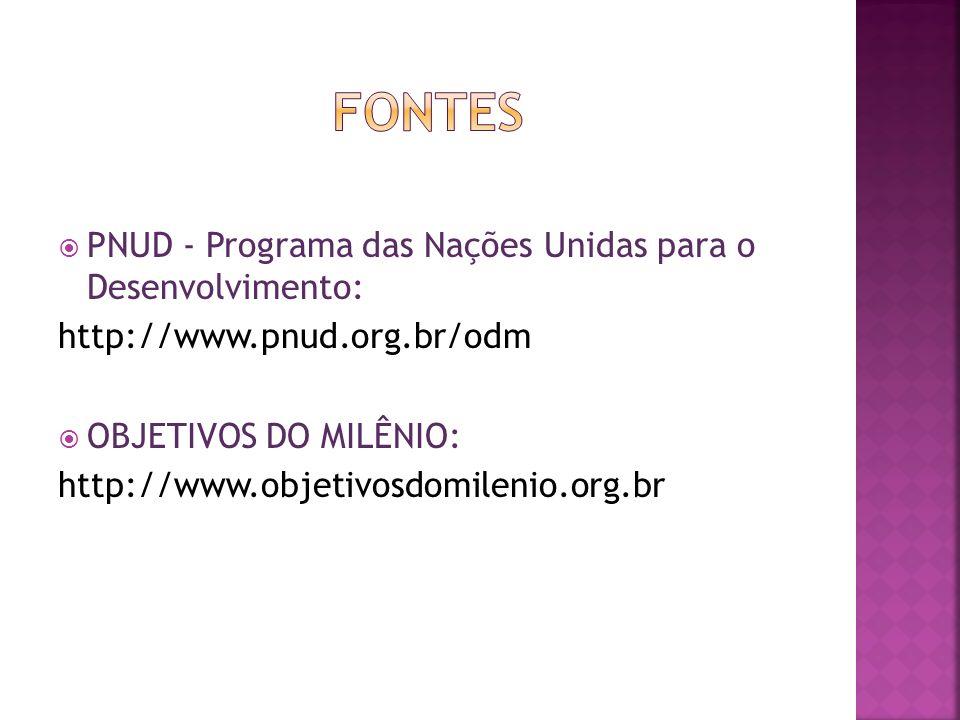 PNUD - Programa das Nações Unidas para o Desenvolvimento: http://www.pnud.org.br/odm OBJETIVOS DO MILÊNIO: http://www.objetivosdomilenio.org.br