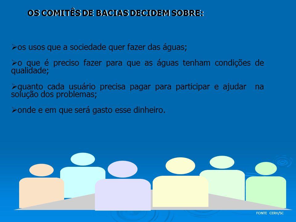 OS COMITÊS DE BACIAS DECIDEM SOBRE: os usos que a sociedade quer fazer das águas; o que é preciso fazer para que as águas tenham condições de qualidad
