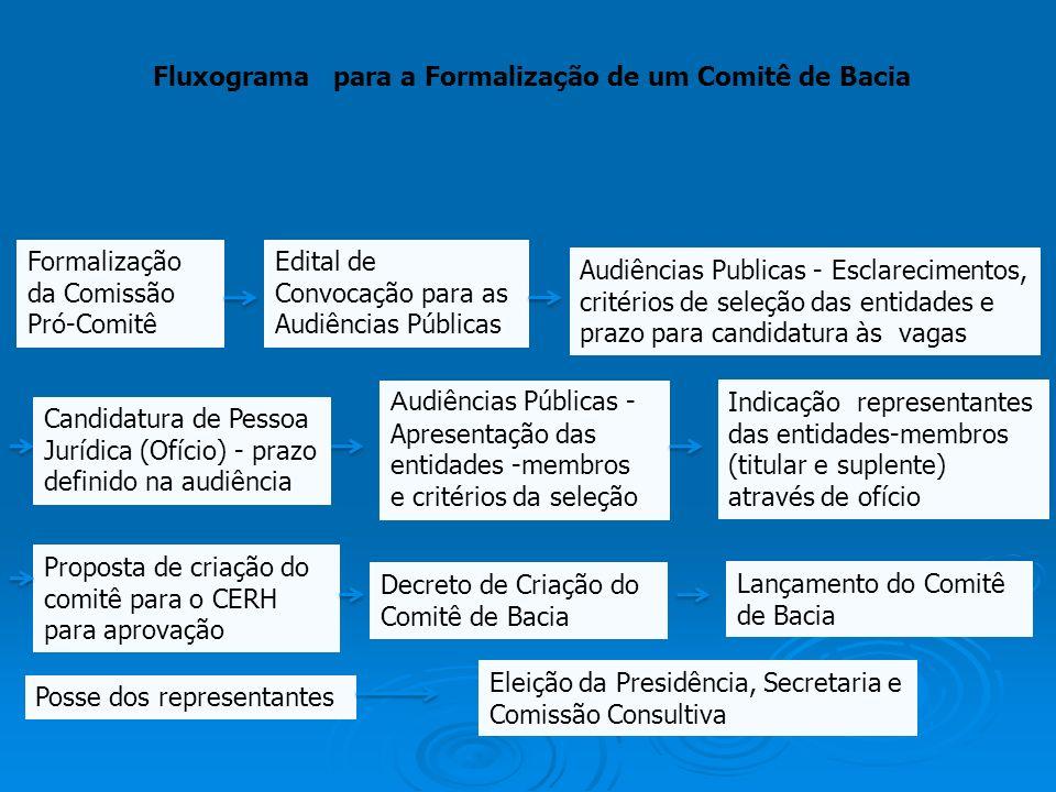 Fluxograma para a Formalização de um Comitê de Bacia Formalização da Comissão Pró-Comitê Edital de Convocação para as Audiências Públicas Audiências P