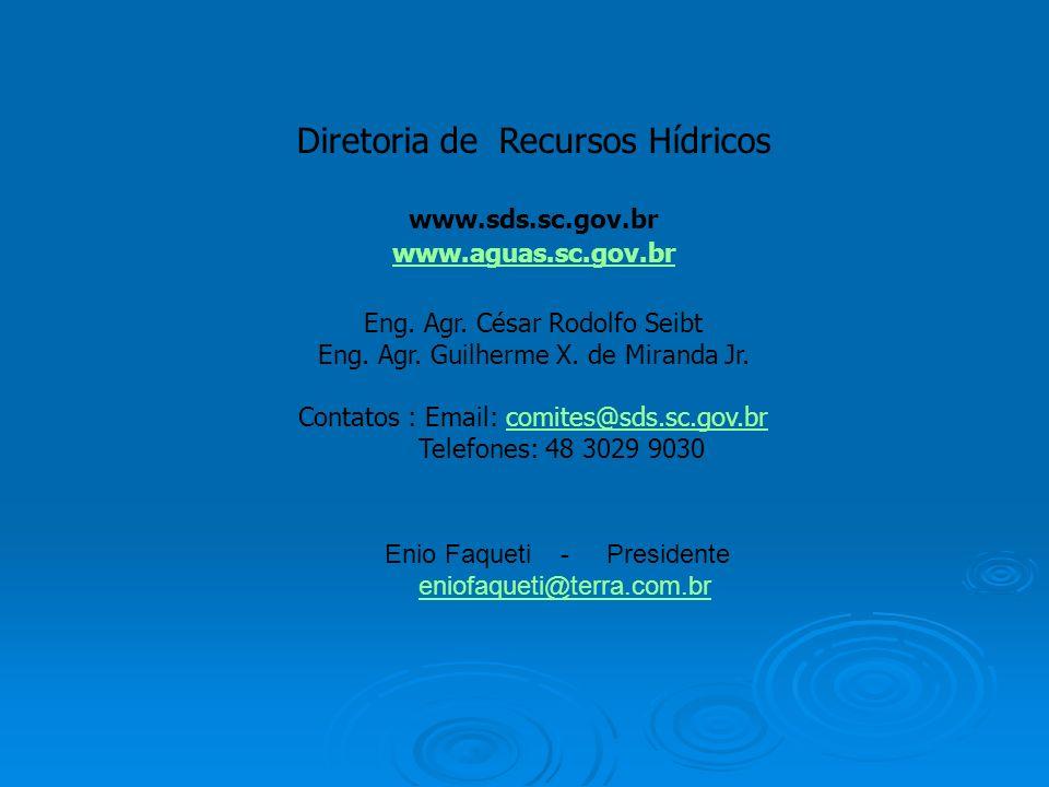 Diretoria de Recursos Hídricos www.sds.sc.gov.br www.aguas.sc.gov.br Eng. Agr. César Rodolfo Seibt Eng. Agr. Guilherme X. de Miranda Jr. Contatos : Em