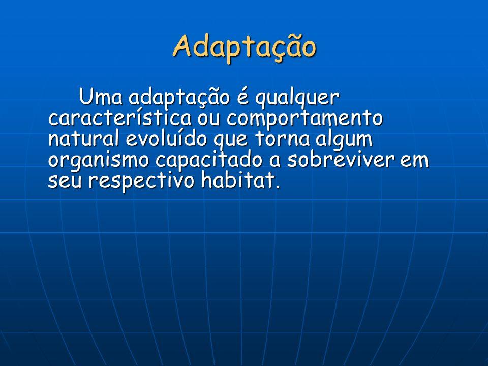 Adaptação Uma adaptação é qualquer característica ou comportamento natural evoluído que torna algum organismo capacitado a sobreviver em seu respectiv