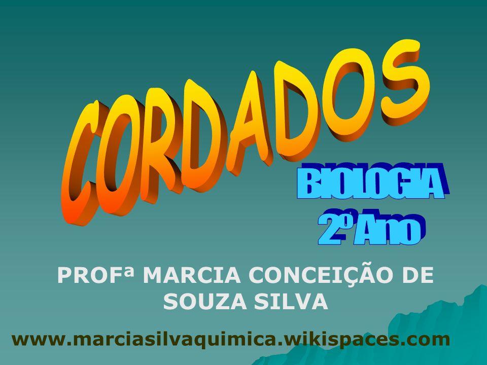 PROFª MARCIA CONCEIÇÃO DE SOUZA SILVA www.marciasilvaquimica.wikispaces.com