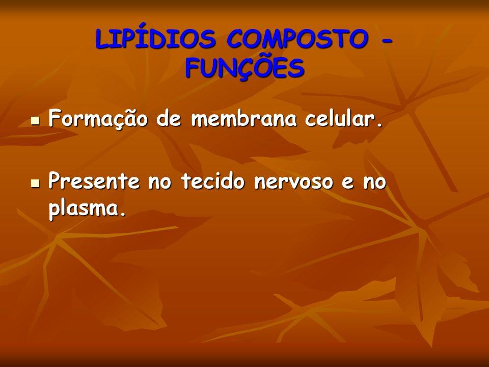 Formação de membrana celular. Formação de membrana celular. Presente no tecido nervoso e no plasma. Presente no tecido nervoso e no plasma. LIPÍDIOS C