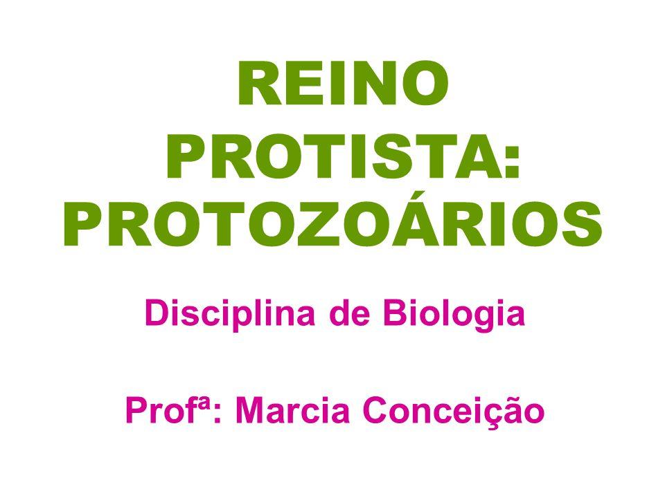 PROTOZOÁRIOS Disciplina de Biologia Profª: Marcia Conceição REINO PROTISTA: