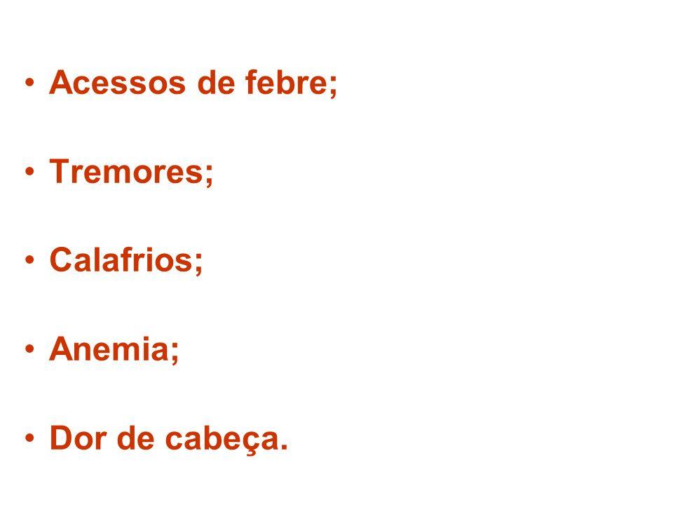 Acessos de febre; Tremores; Calafrios; Anemia; Dor de cabeça.