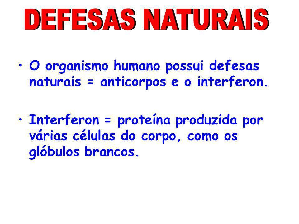 O organismo humano possui defesas naturais = anticorpos e o interferon. Interferon = proteína produzida por várias células do corpo, como os glóbulos