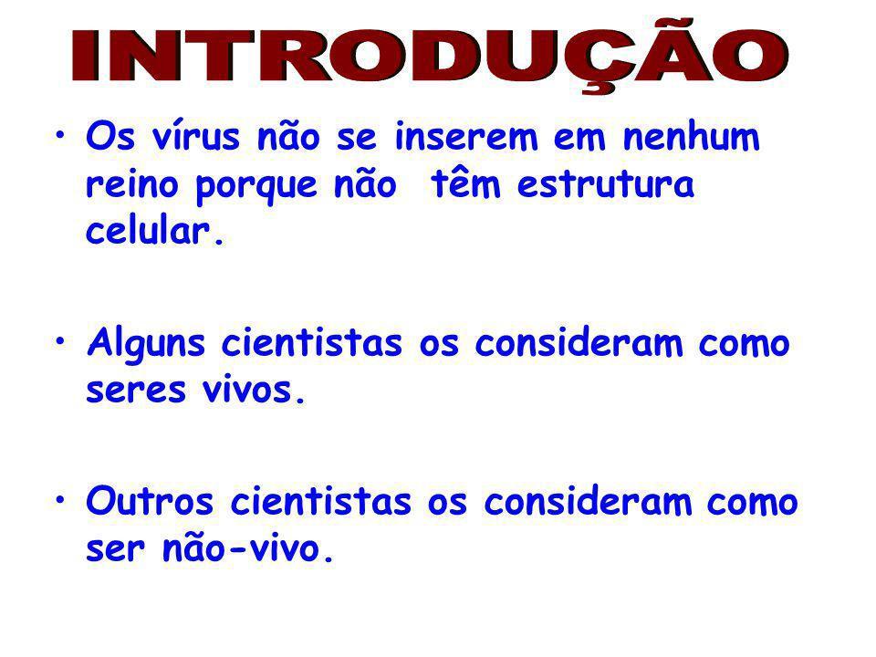 Os vírus não se inserem em nenhum reino porque não têm estrutura celular. Alguns cientistas os consideram como seres vivos. Outros cientistas os consi