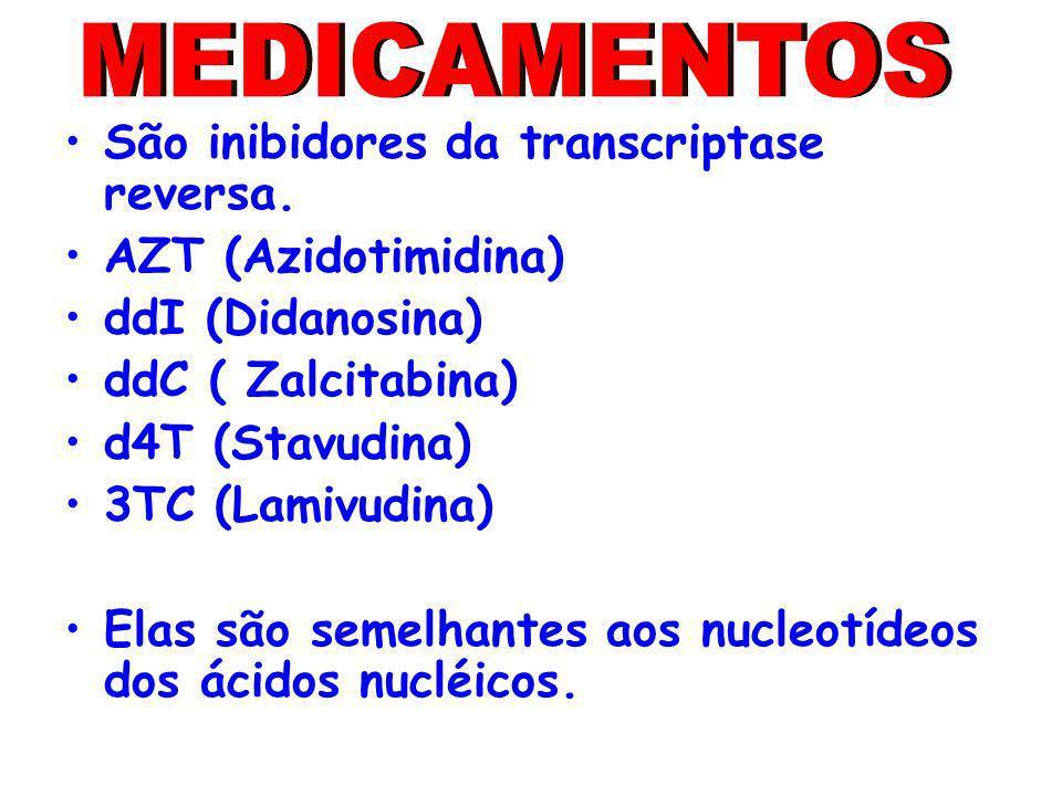 São inibidores da transcriptase reversa. AZT (Azidotimidina) ddI (Didanosina) ddC ( Zalcitabina) d4T (Stavudina) 3TC (Lamivudina) Elas são semelhantes