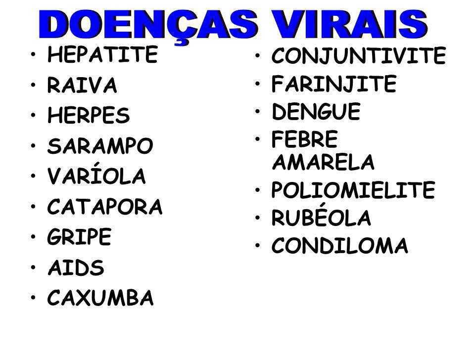 HEPATITE RAIVA HERPES SARAMPO VARÍOLA CATAPORA GRIPE AIDS CAXUMBA CONJUNTIVITE FARINJITE DENGUE FEBRE AMARELA POLIOMIELITE RUBÉOLA CONDILOMA