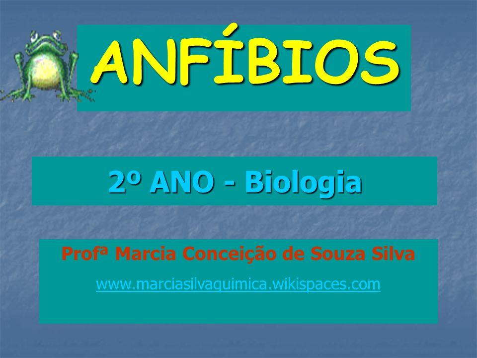 2º ANO - Biologia ANFÍBIOS Profª Marcia Conceição de Souza Silva www.marciasilvaquimica.wikispaces.com